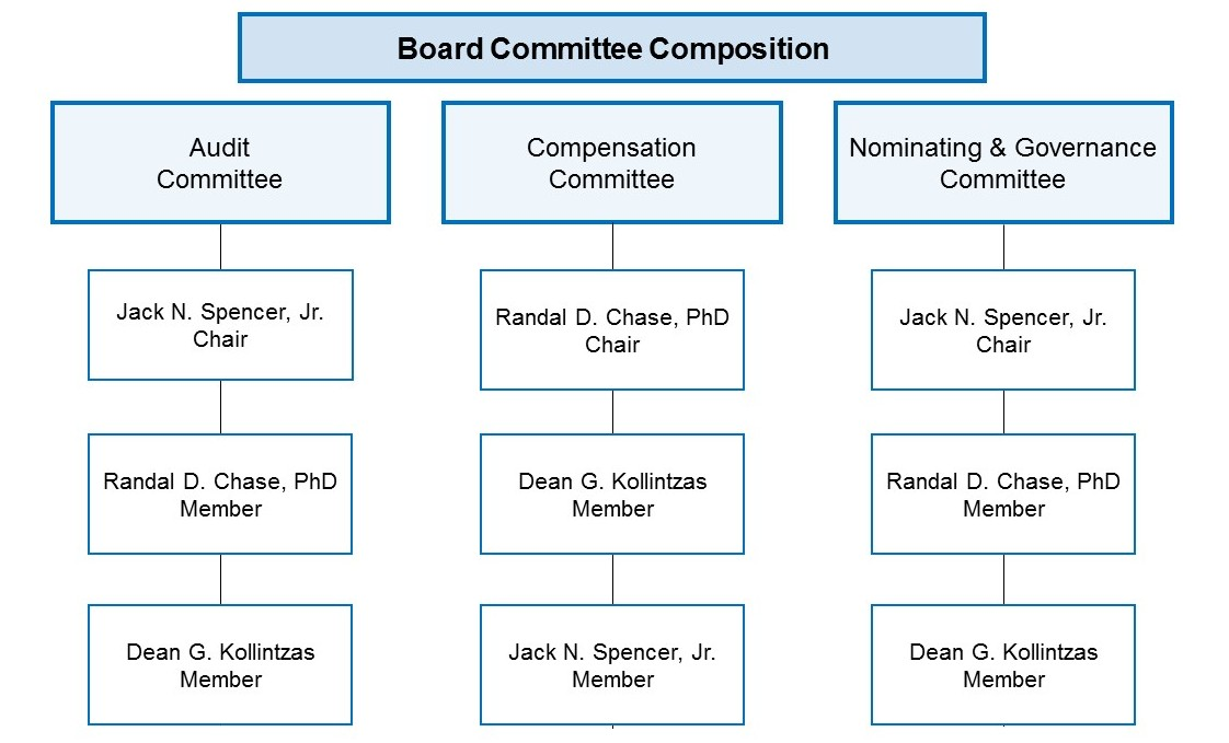 Board Committee Composition